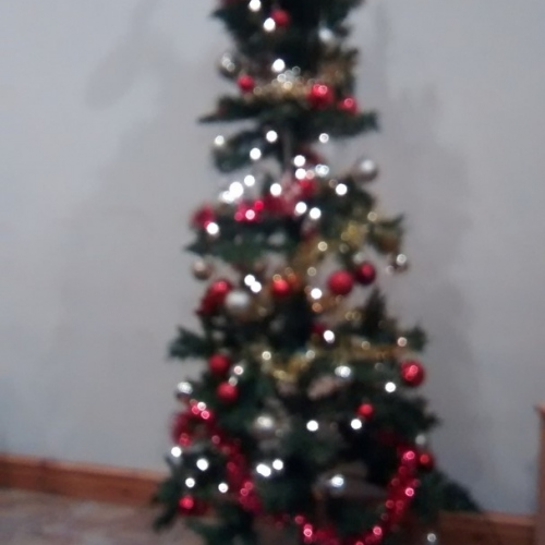 Christmas Tree at Castle Farm Holidays Shropshire